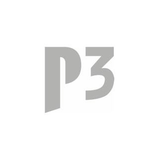 P3 Group GmbH - Premiumpartner bei talentcube.de